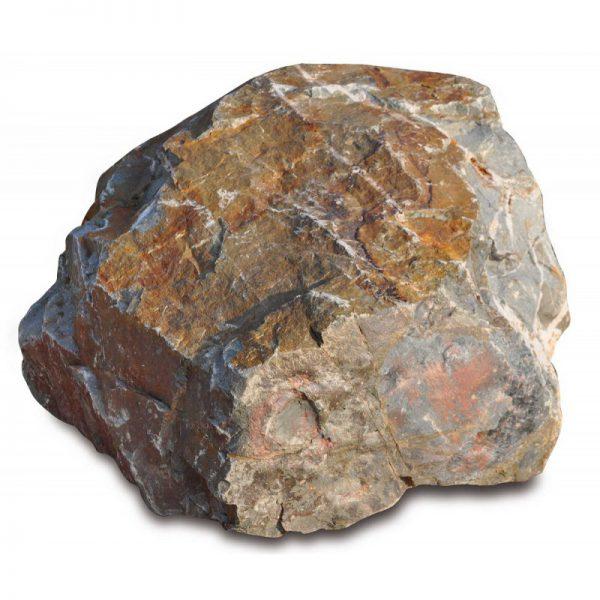 Zwerfsteen Grauwacke